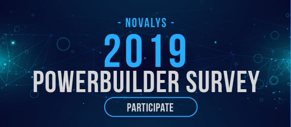 PowerBuilder Projects Global Survey by Novalys